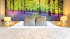 bed-breakfast-forest-of-dean